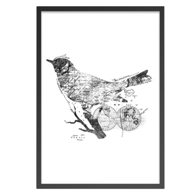 Bird Wanderlust Black and White