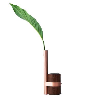 vaso pós-tropical