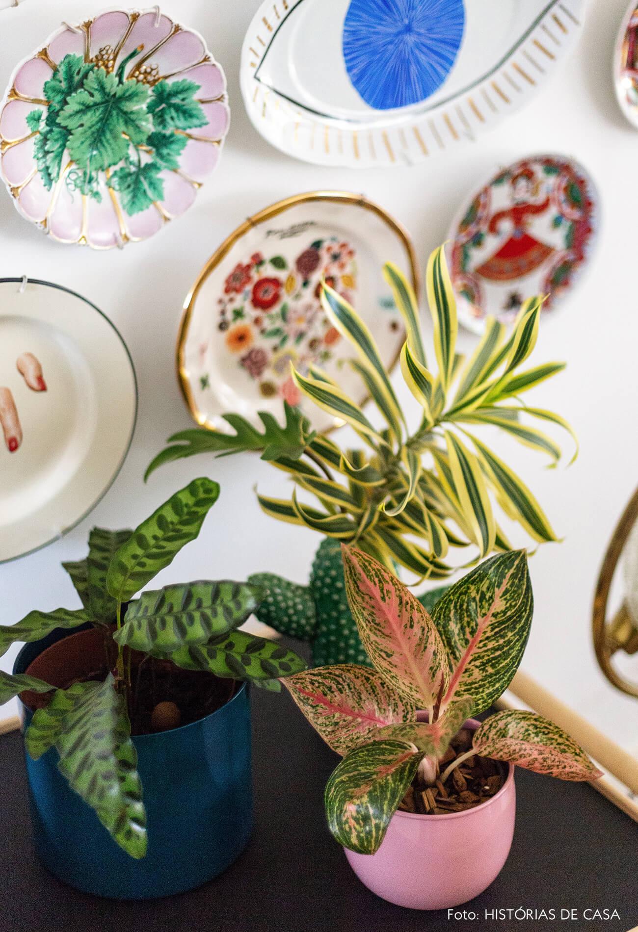 Pratos de parede e vasos de planta coloridos