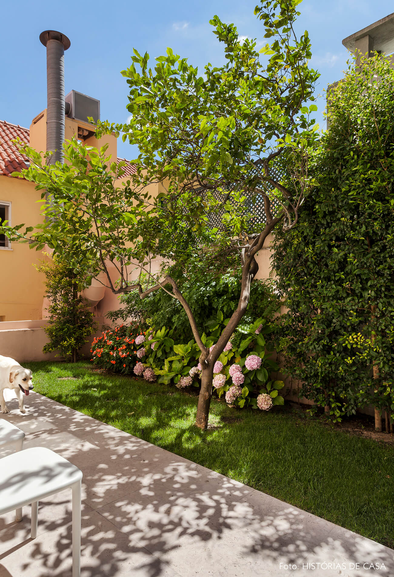 Jardim com árvore e flores