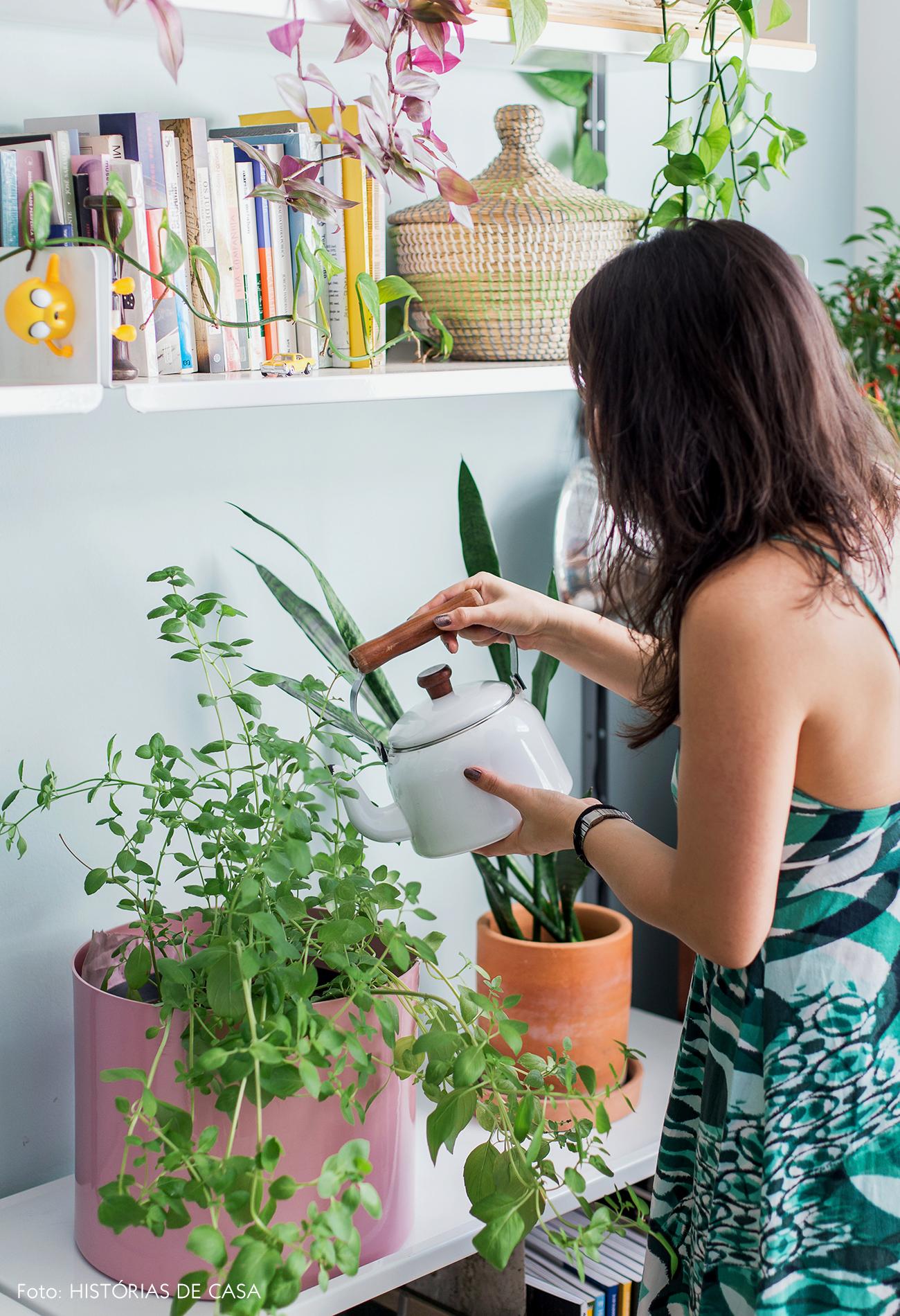 Parede azul claro com plantas e temperos