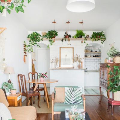 Apartamento pequeno com muitas plantas e decoração aconchegante