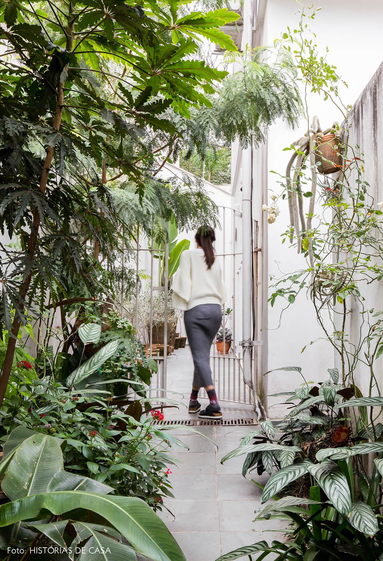 Corredor de entrada com plantas