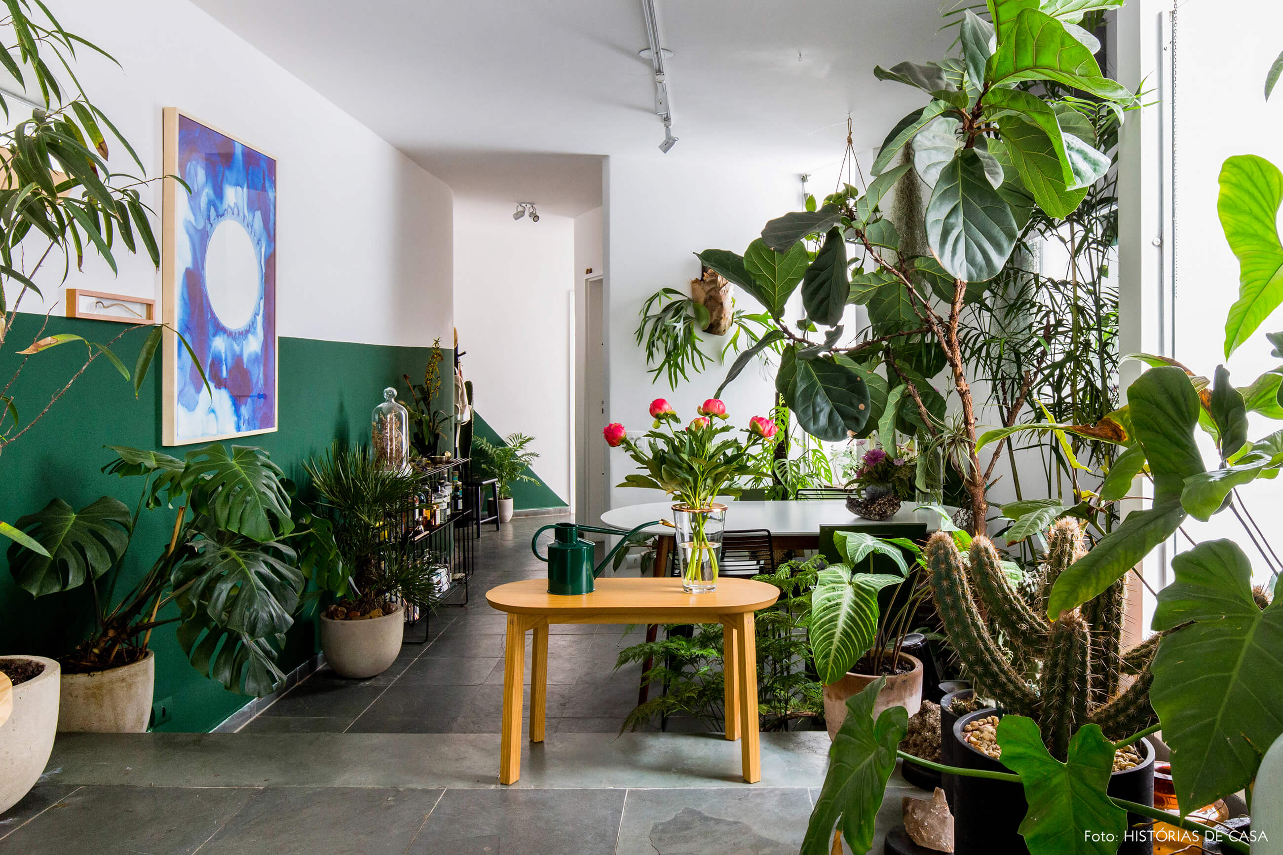 Sala com plantas e paredes pintadas de verde