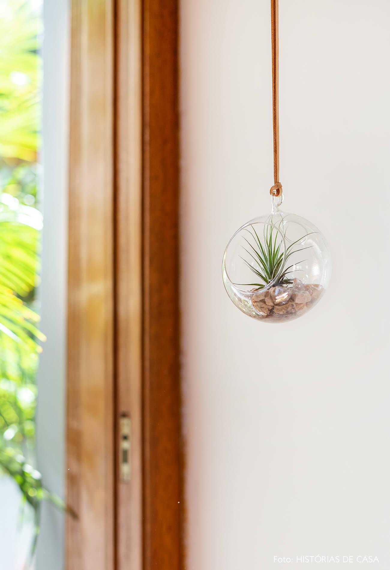 Janelas de madeira e terrário de vidro com airplant