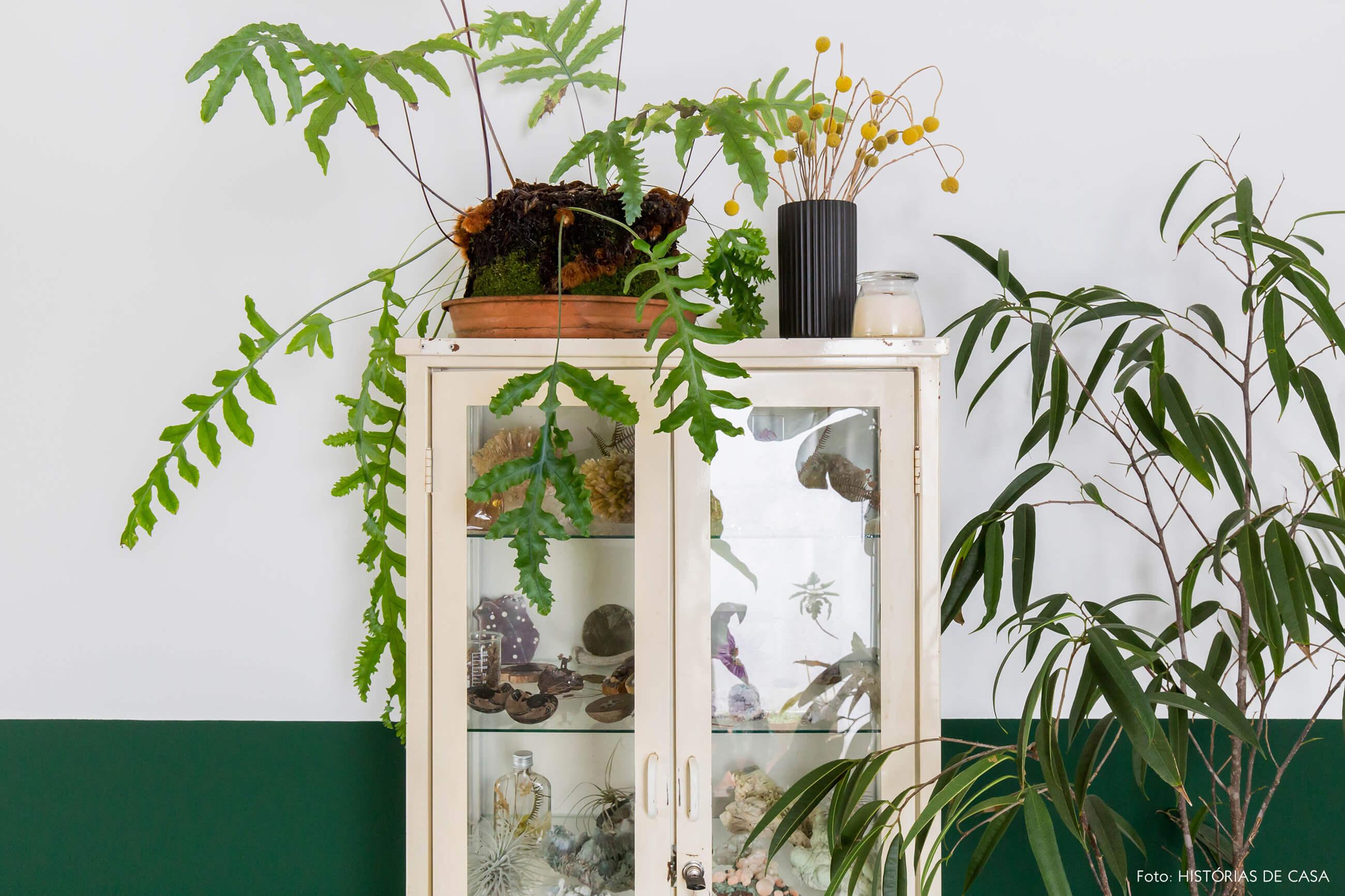 Meia parede verde e armário de farmácia vintage