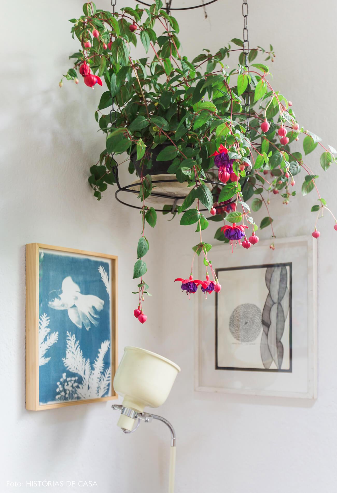 Planta suspensa e quadros coloridos