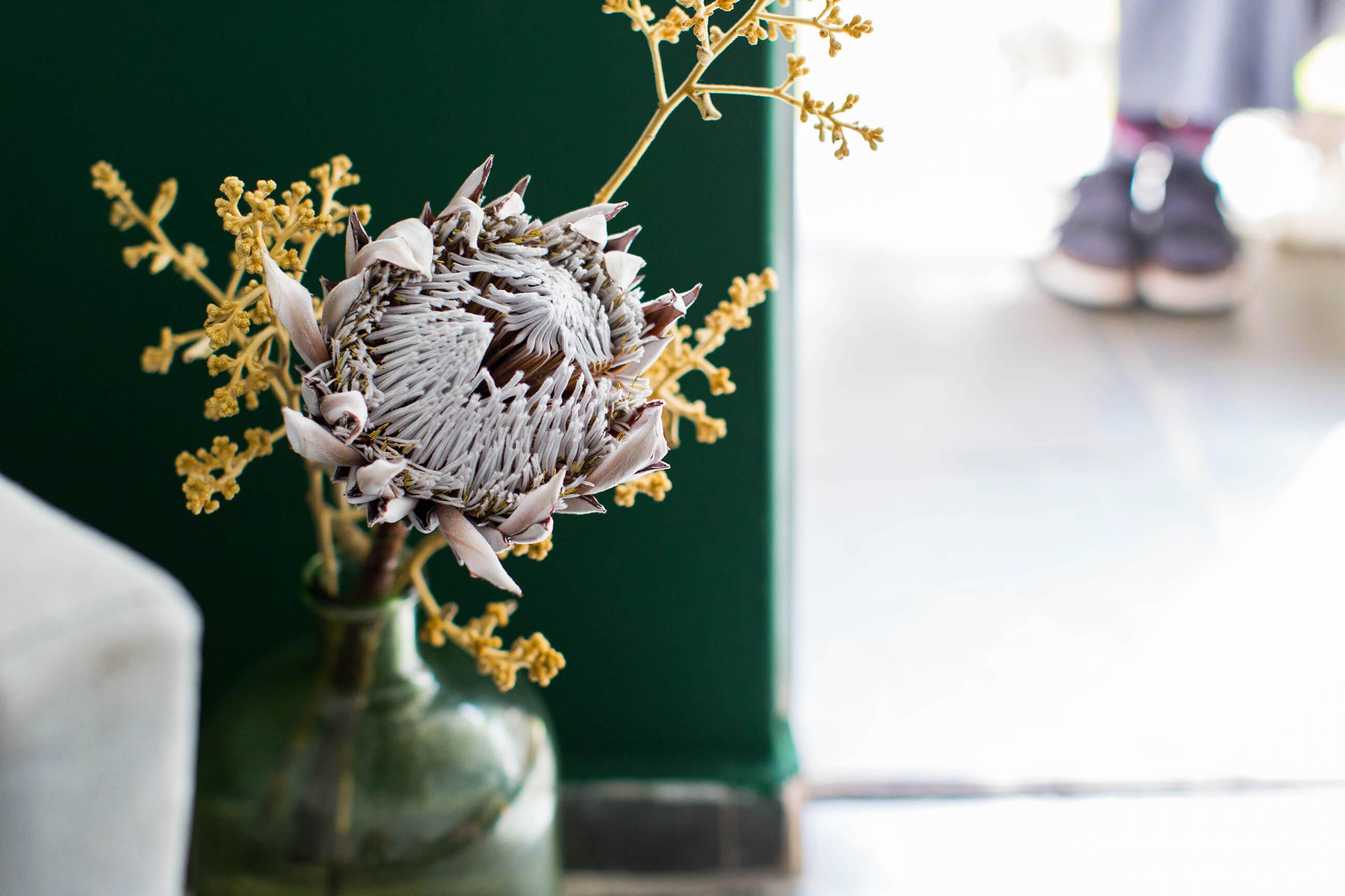 Arranjo com flores secas e Protea King