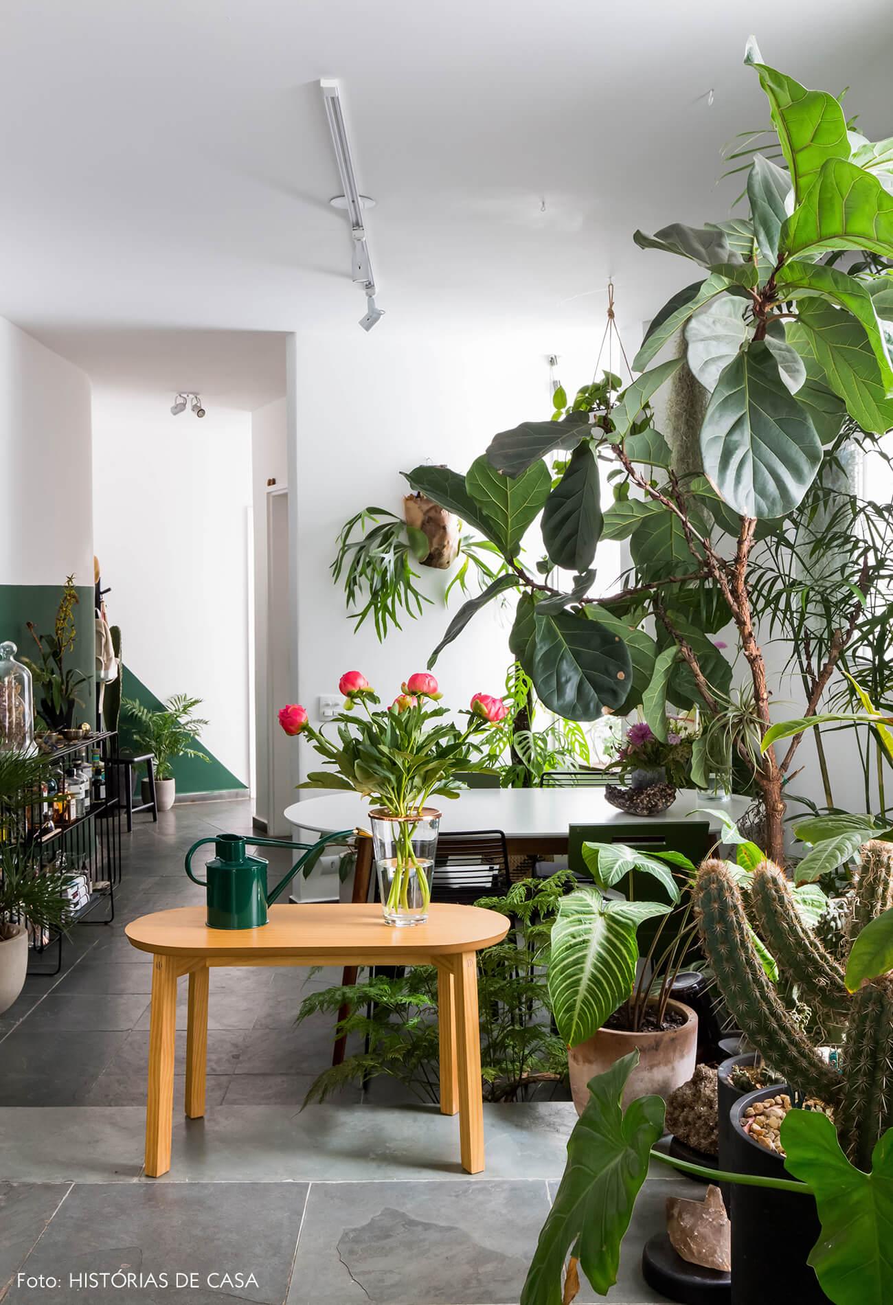 Sala com muitas plantas e banquinho de madeira