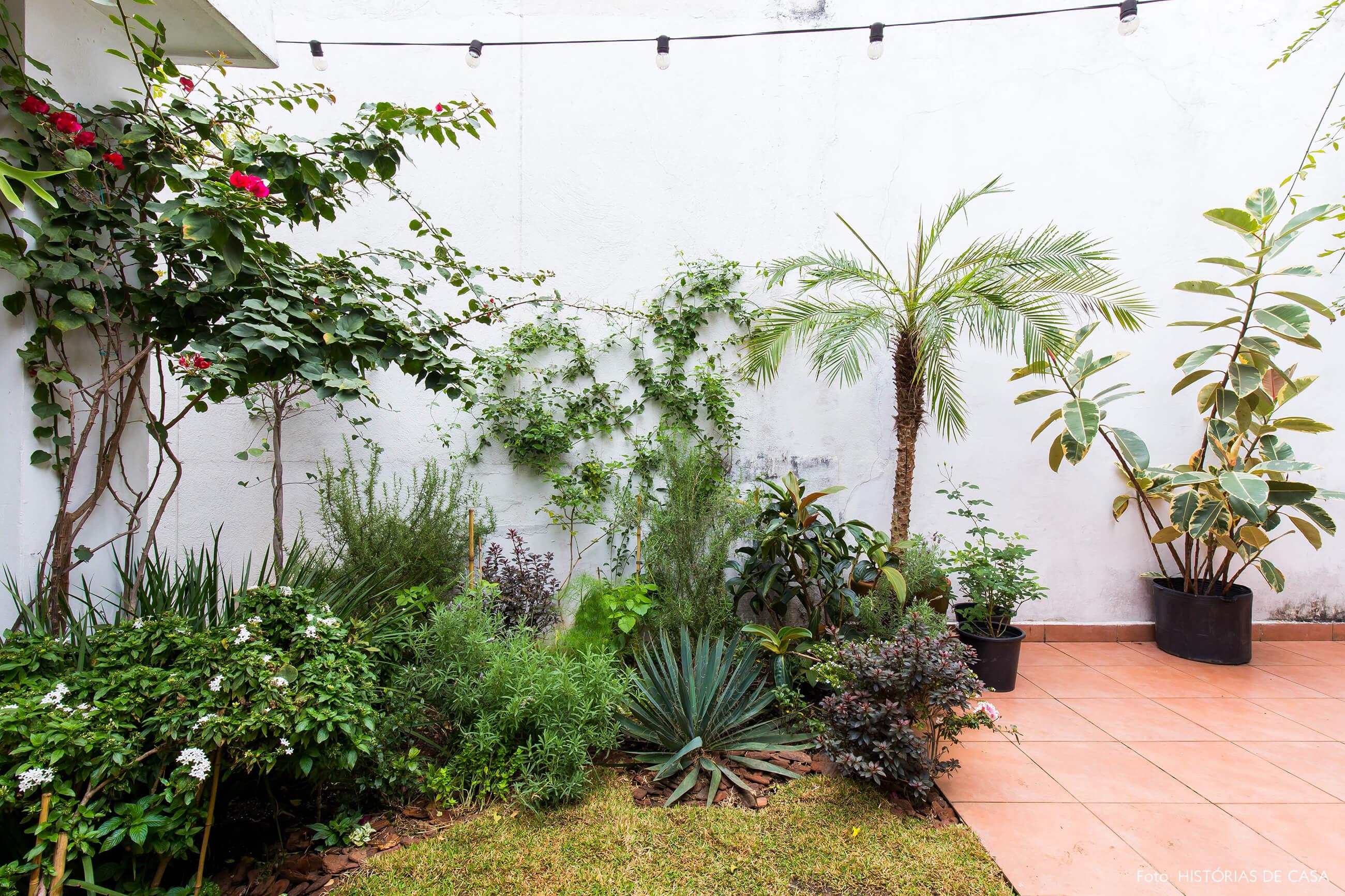 Casa com jardim dos fundos com ervas e temperos