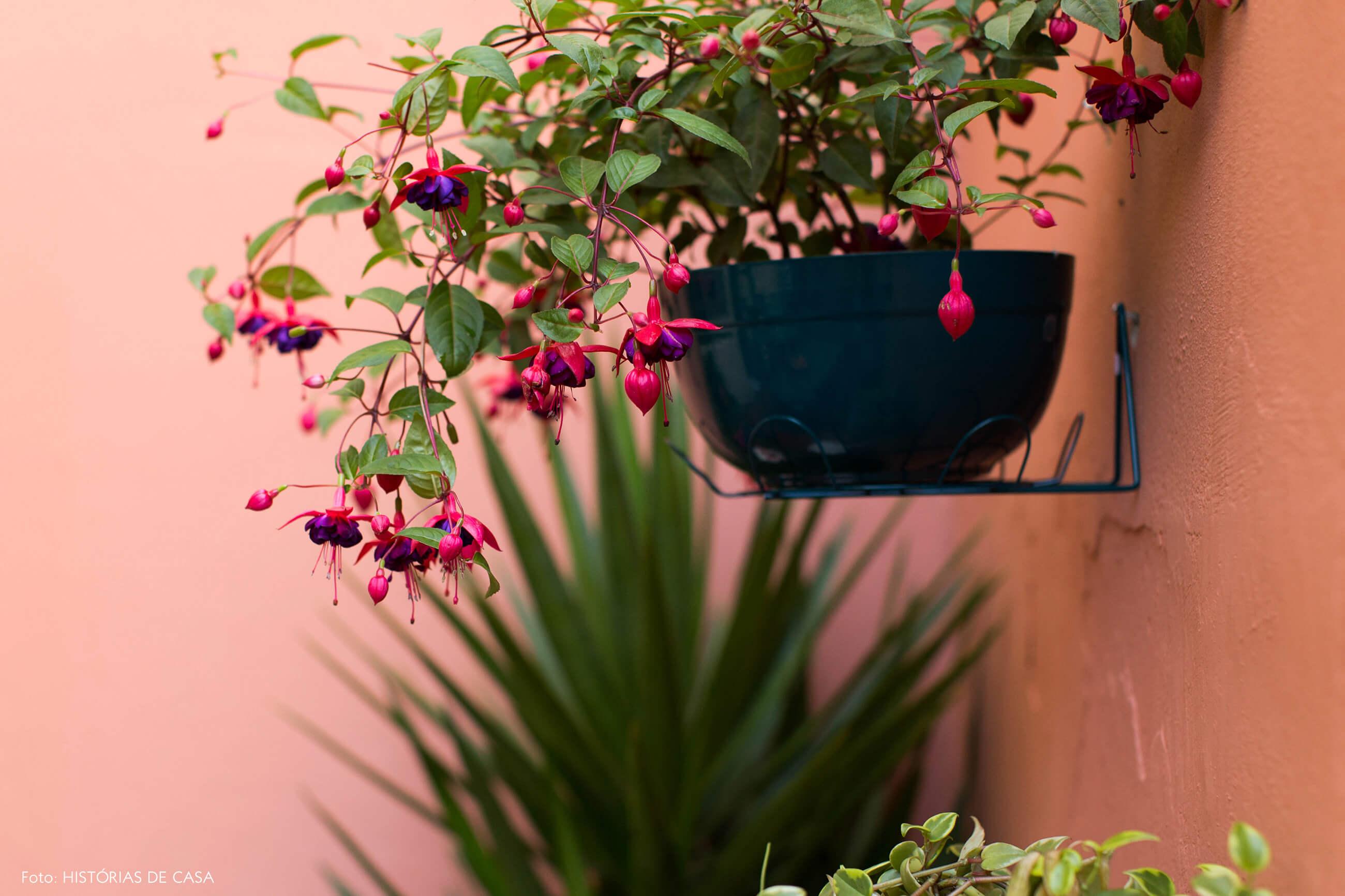 Planta em suporte de parede no quintal