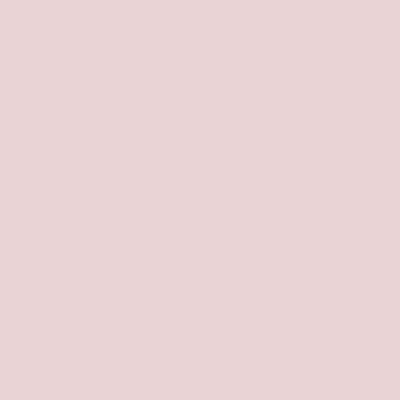 Cor Sapatilha de ponta – Suvinil A101