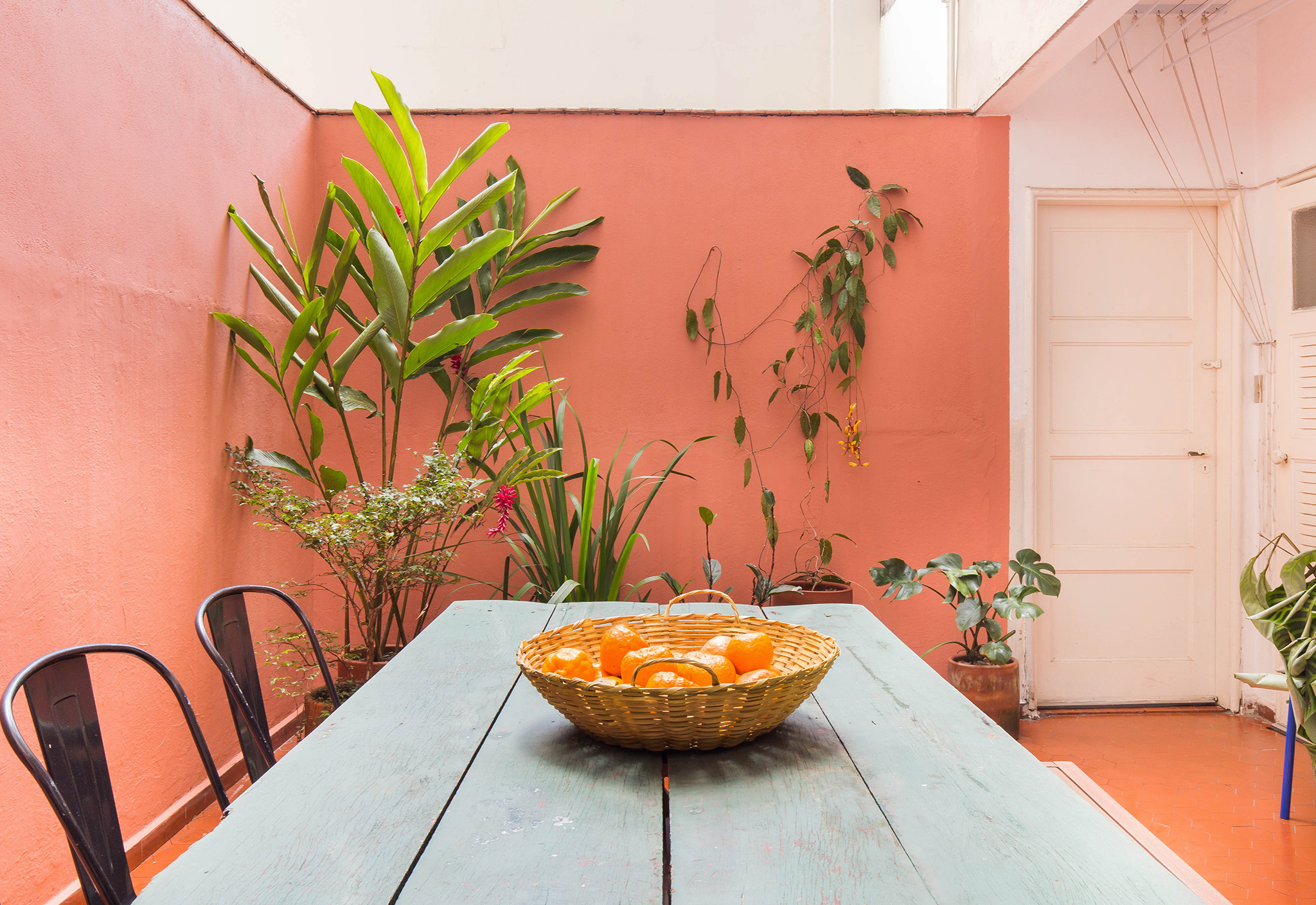 Área externa colorida com plantas