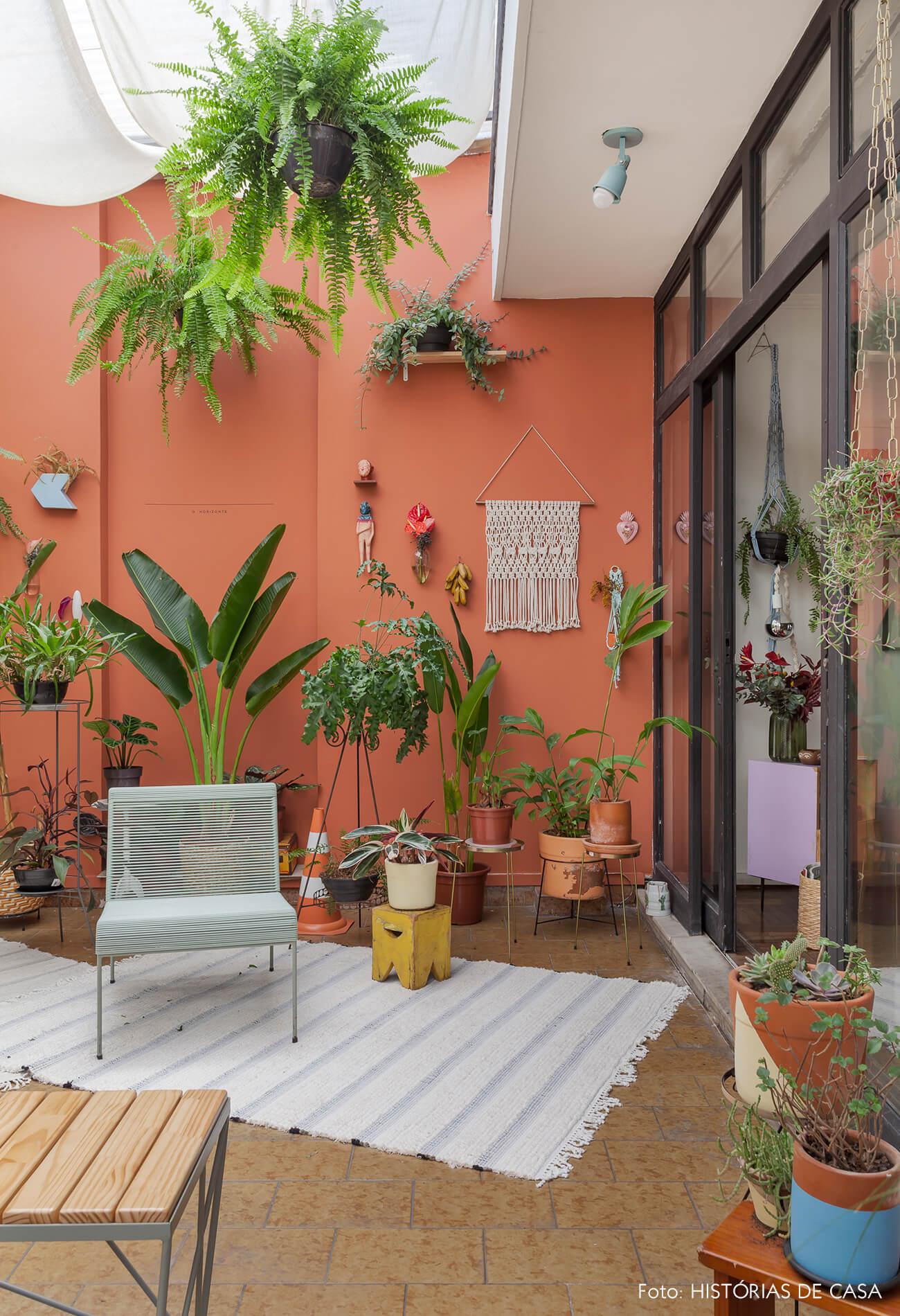 Quintal com parede colorida e muitas plantas