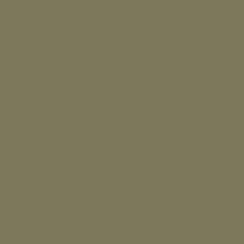 Cor capim-seco – P295
