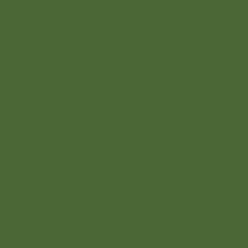 Cor Mistura Saudável – P642