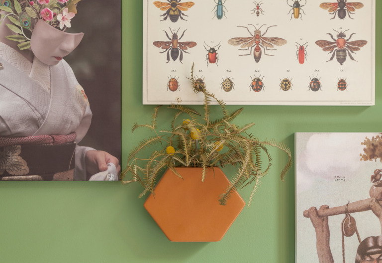 Parede verde com quadros e vaso suspenso