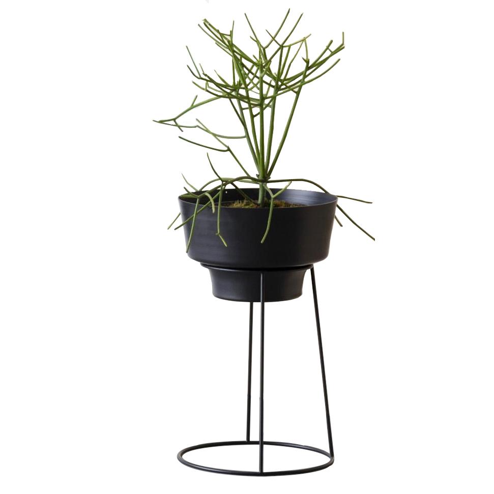 java – suporte botânico e cachepot