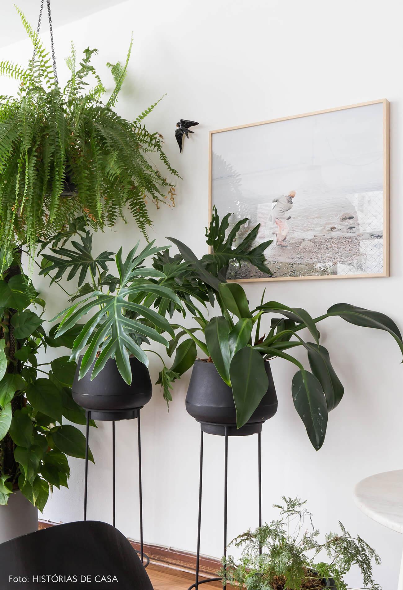 Sala com plantas e suportes de piso