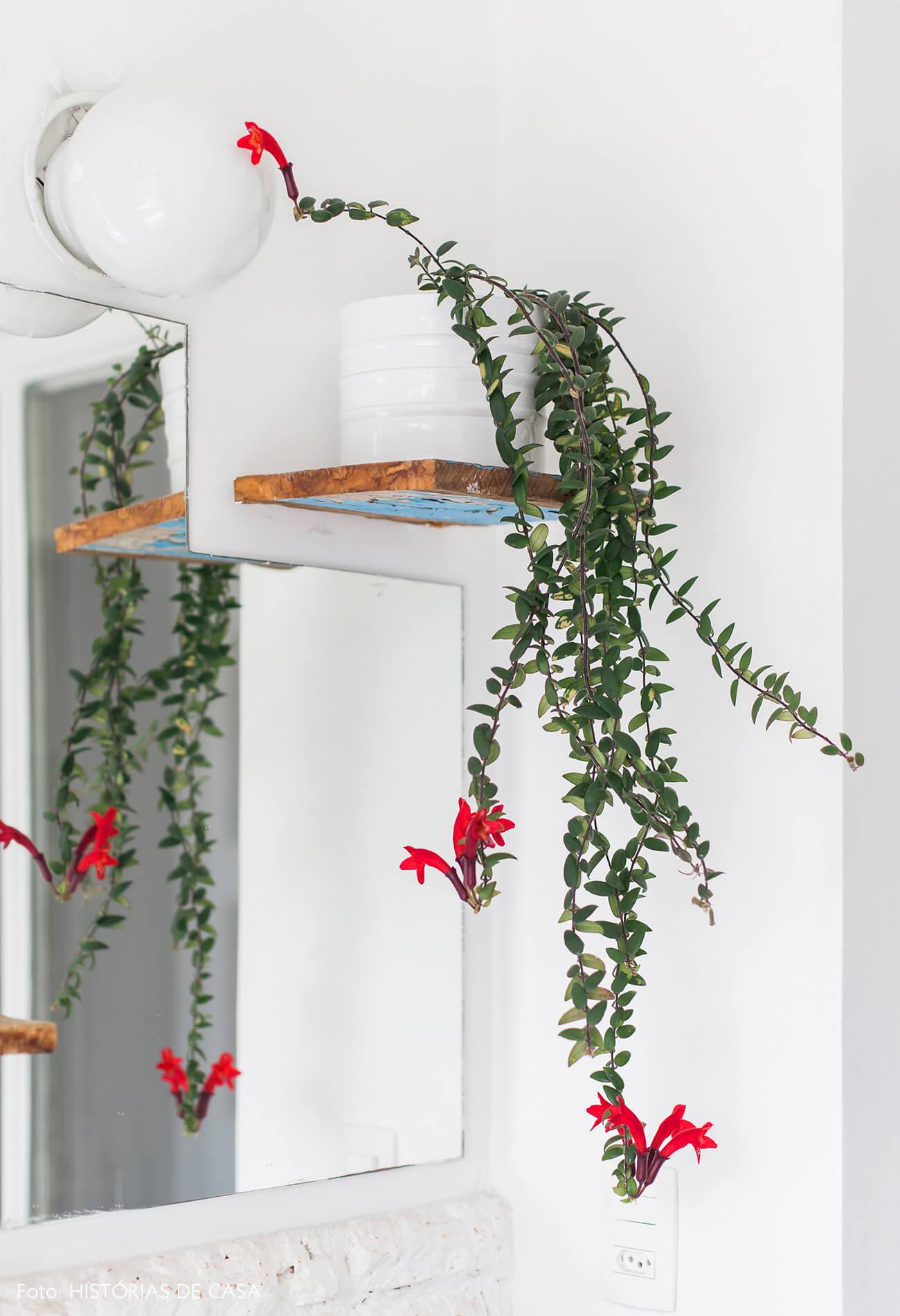 Banheiro com parede de vidro e plantas