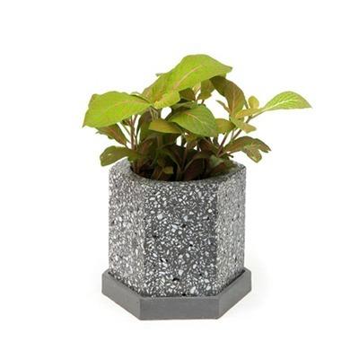 Vaso de cimento granilite Selvvva