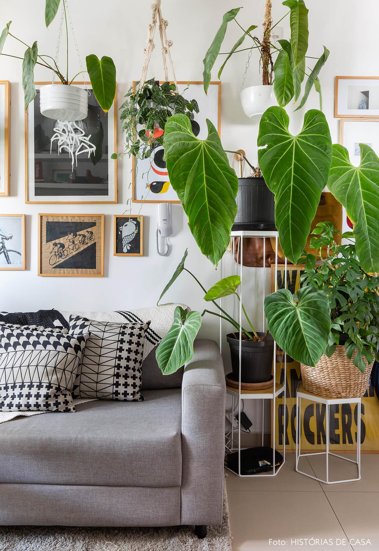 Apartamento pequeno com muitas plantas e suportes de piso