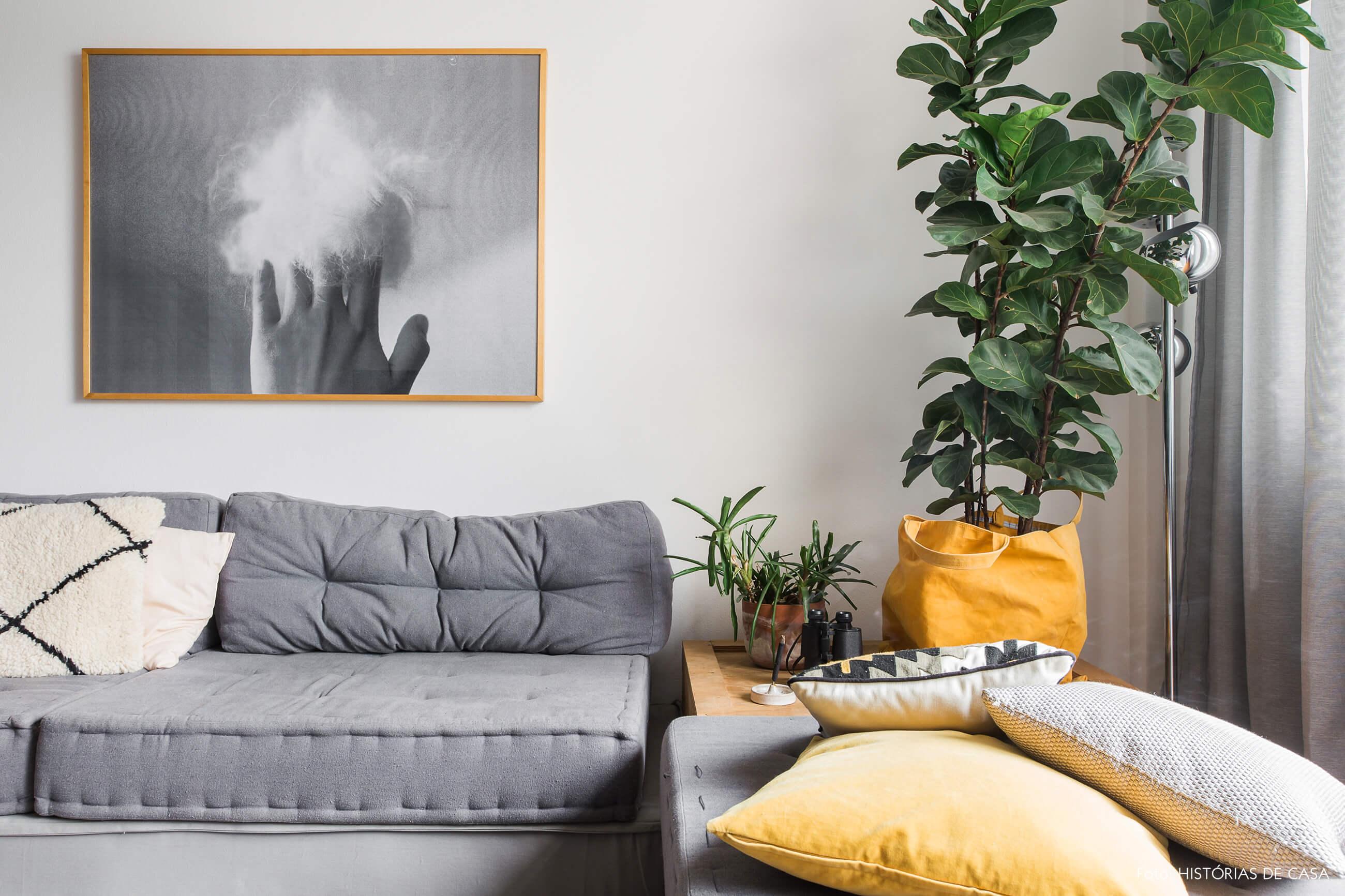 Sala com tons de cinza e planta Ficus Lyrata