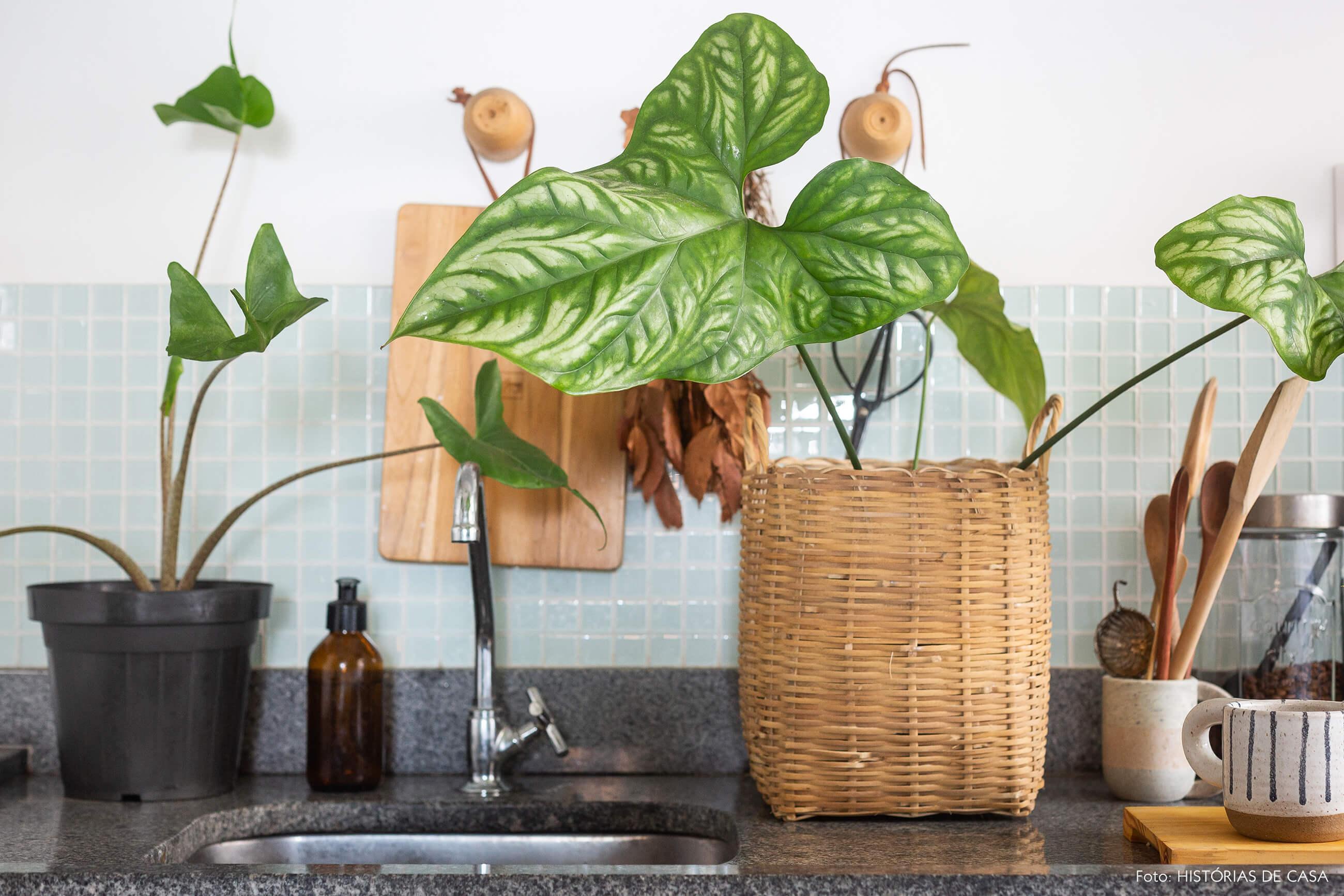 Apartamento pequeno com muitas plantas, até na cozinha