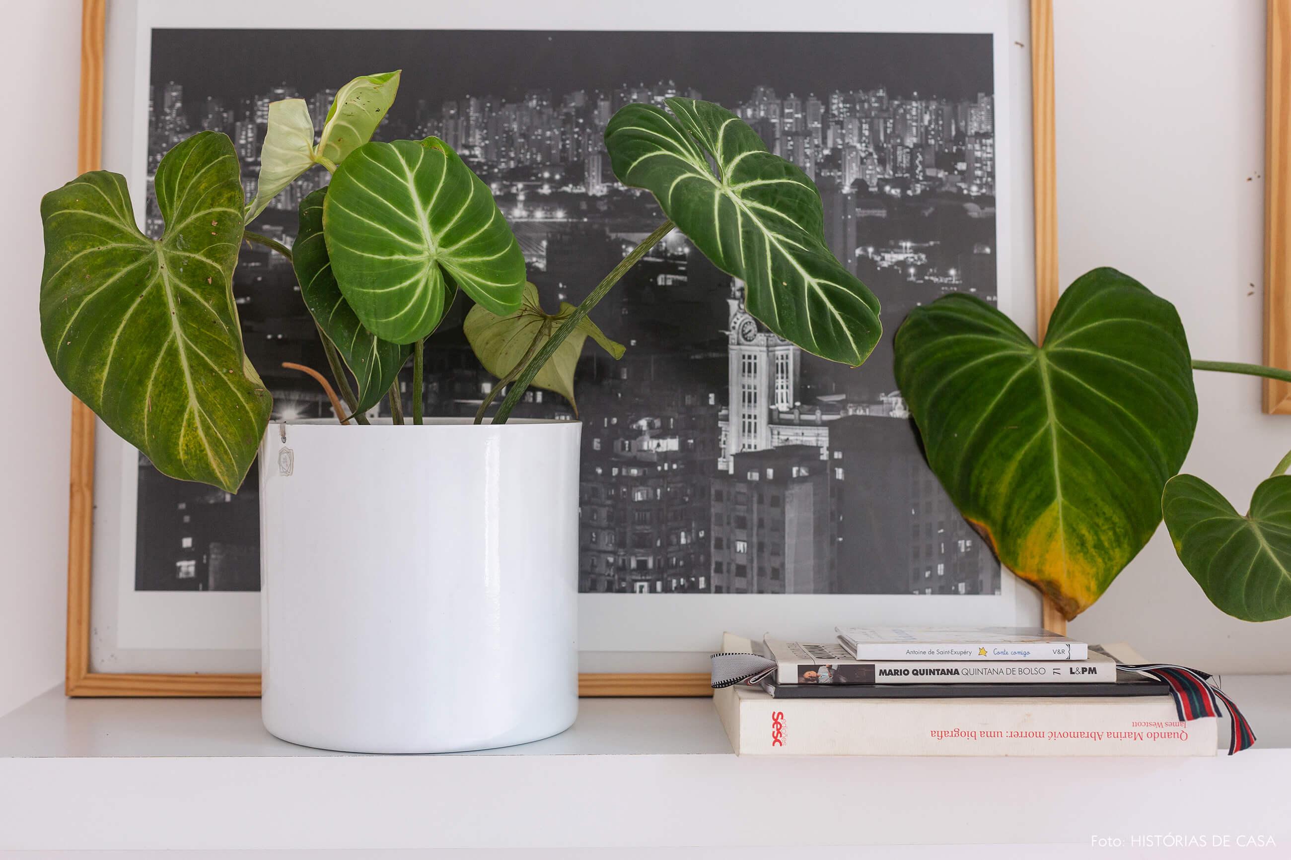 Apartamento pequeno com muitas plantas e cachepôs brancos