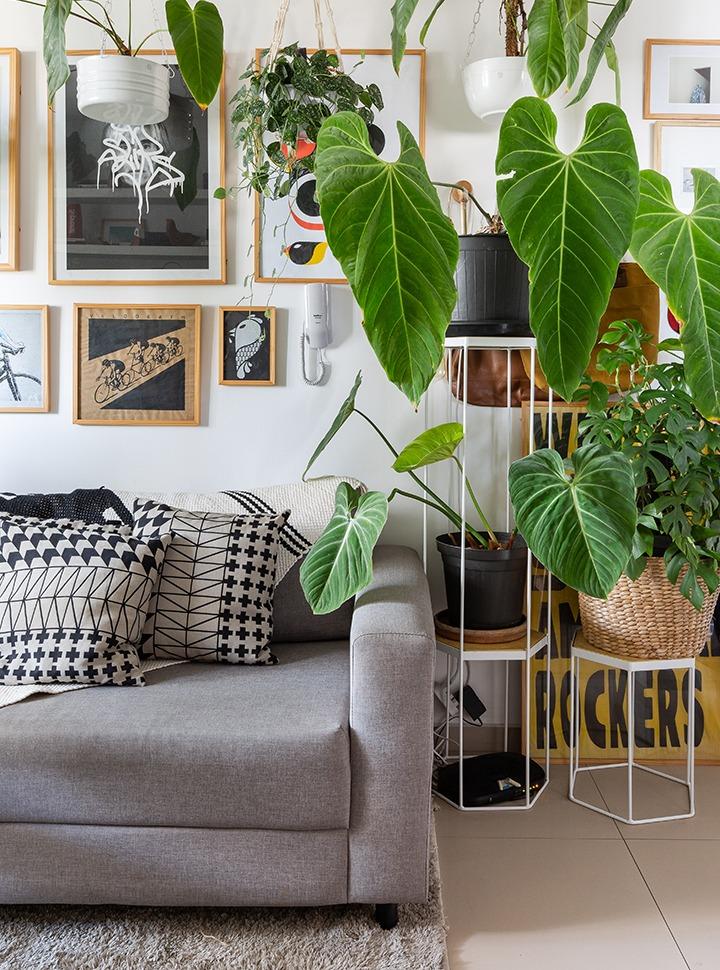 Muitas plantas em um apartamento pequeno