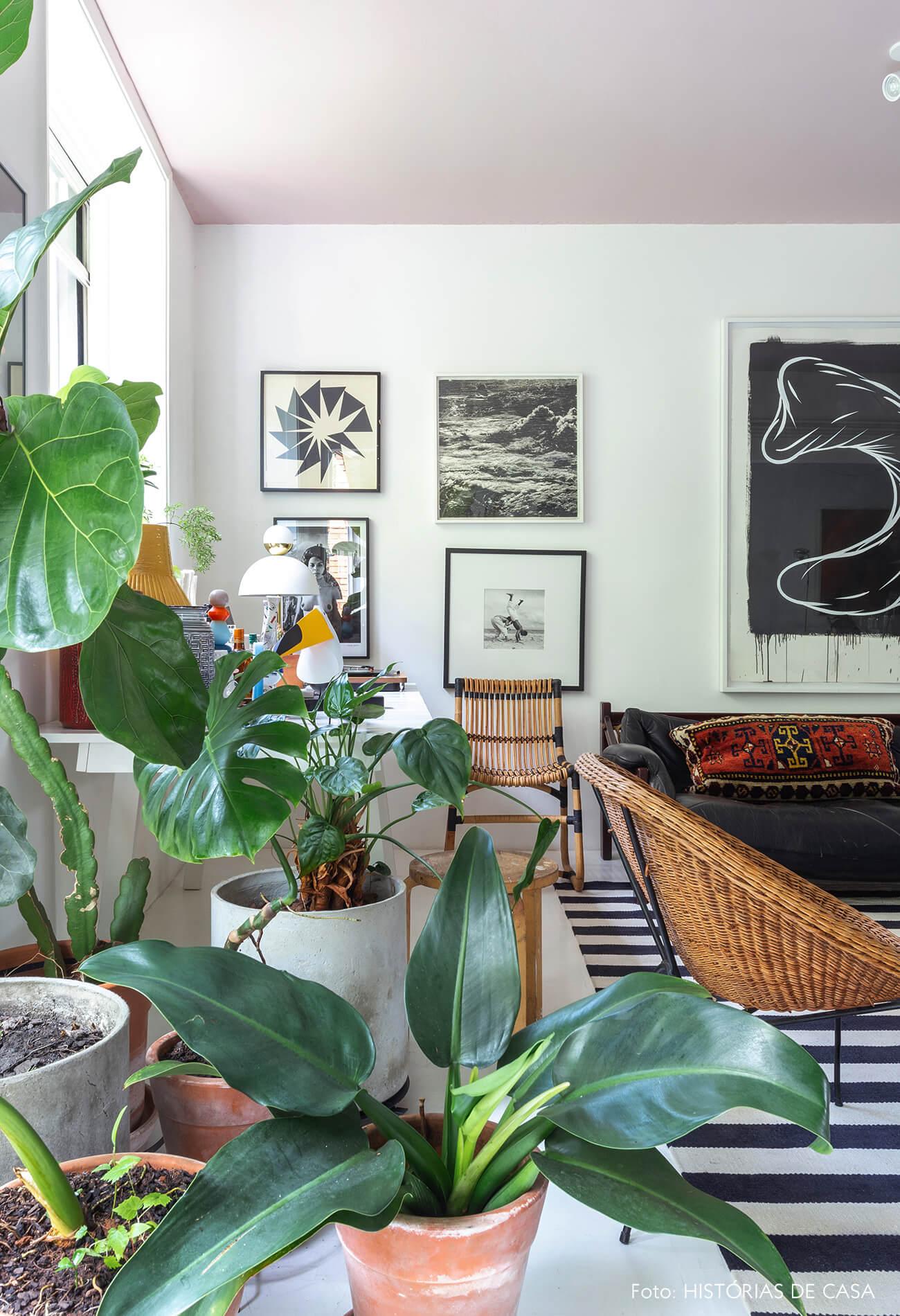 Apartamento do Maurício Arruda, sala com plantas e poltrona de vime