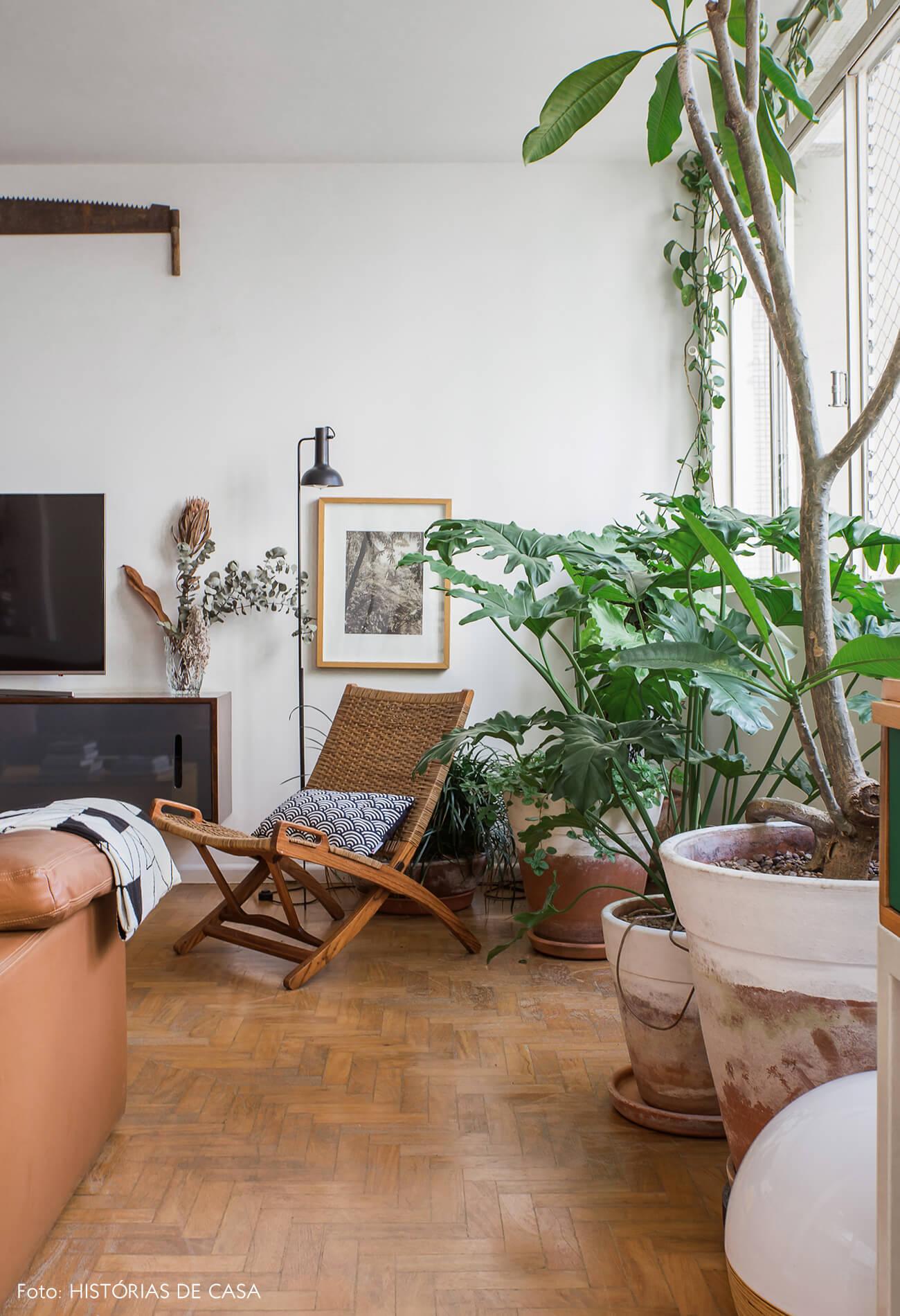 Apartamento com muitas plantas e piso de madeira