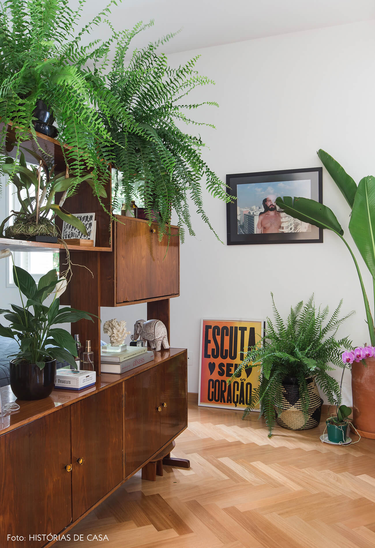 Apartamento integrado com estante vintage servindo como divisória e muitas plantas