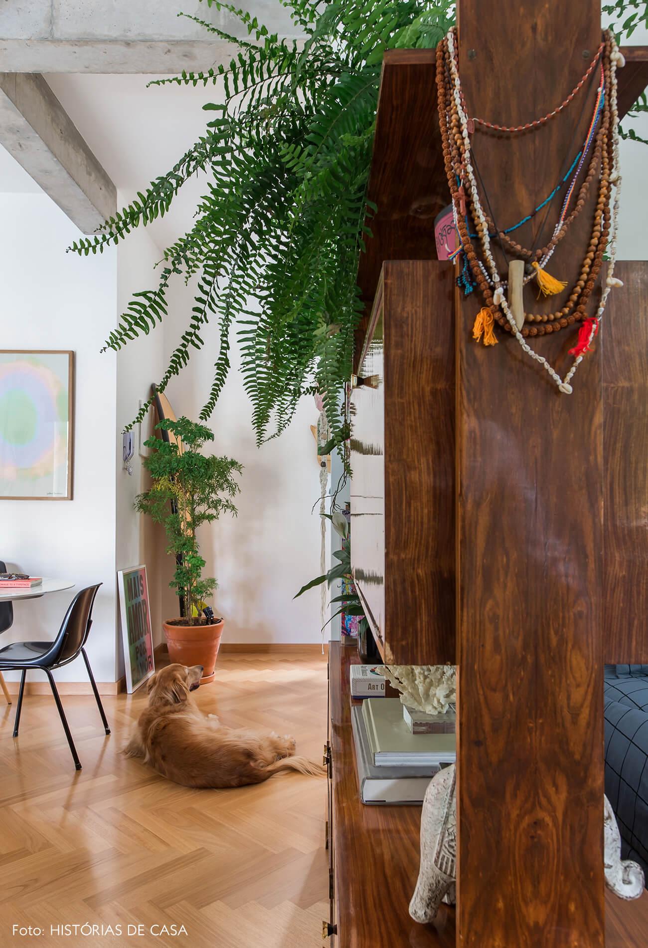 Apartamento integrado com estante vintage servindo como divisória e samambaias