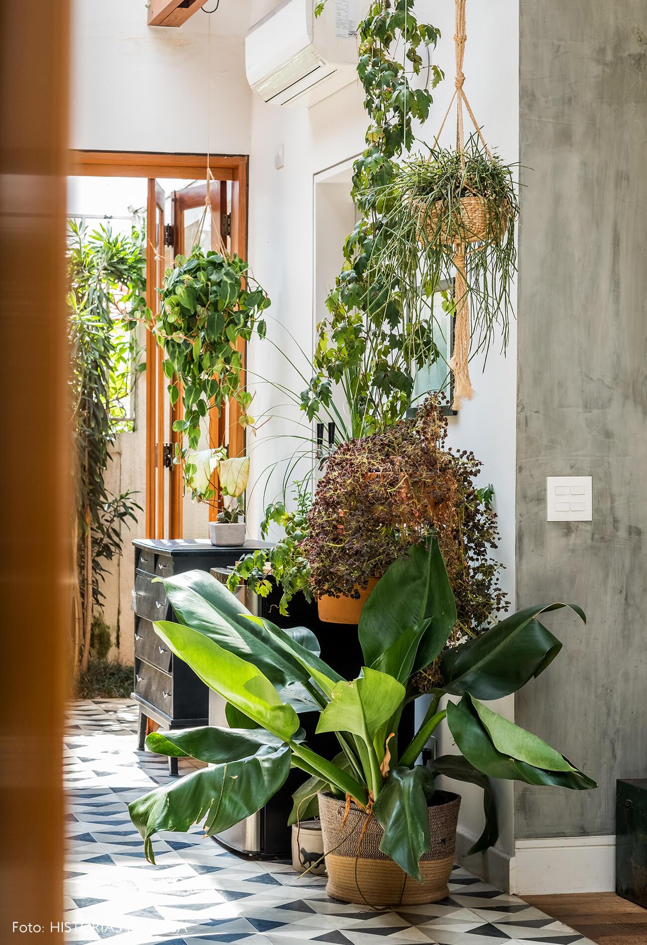 Sala com parede de cimento queimado e muitas plantas