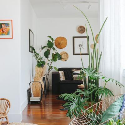 Apartamento da chef Renata Vanzetto, plantas na sala