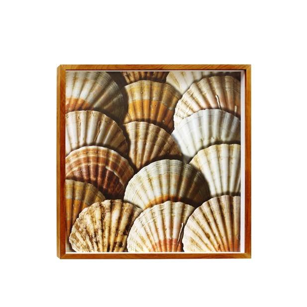 Quadro Conchas Bege 50x50cm Inspire