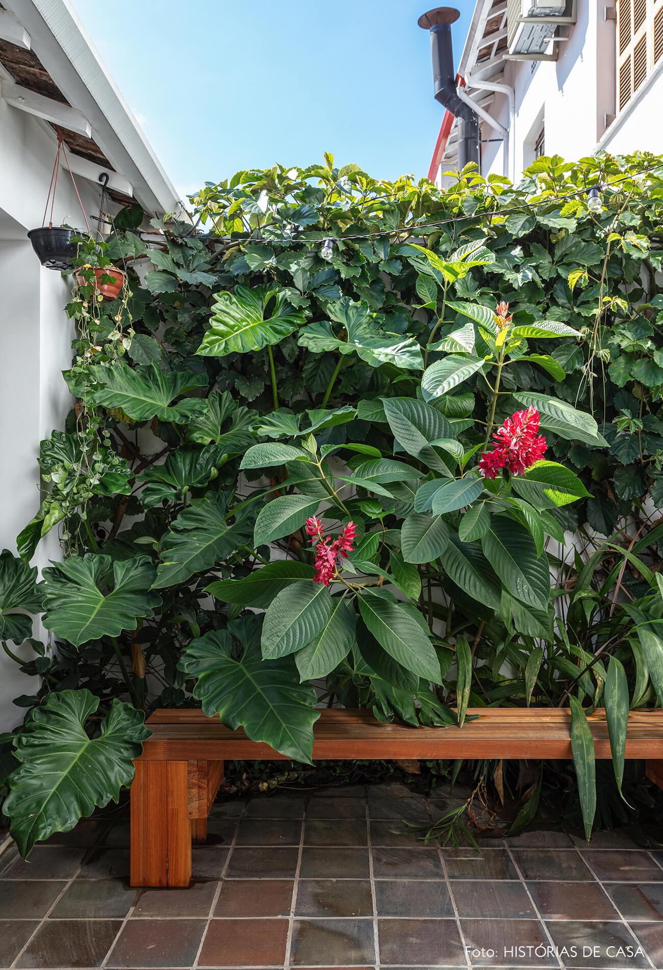 Casa com quintal e jardim nos fundos, parede de plantas