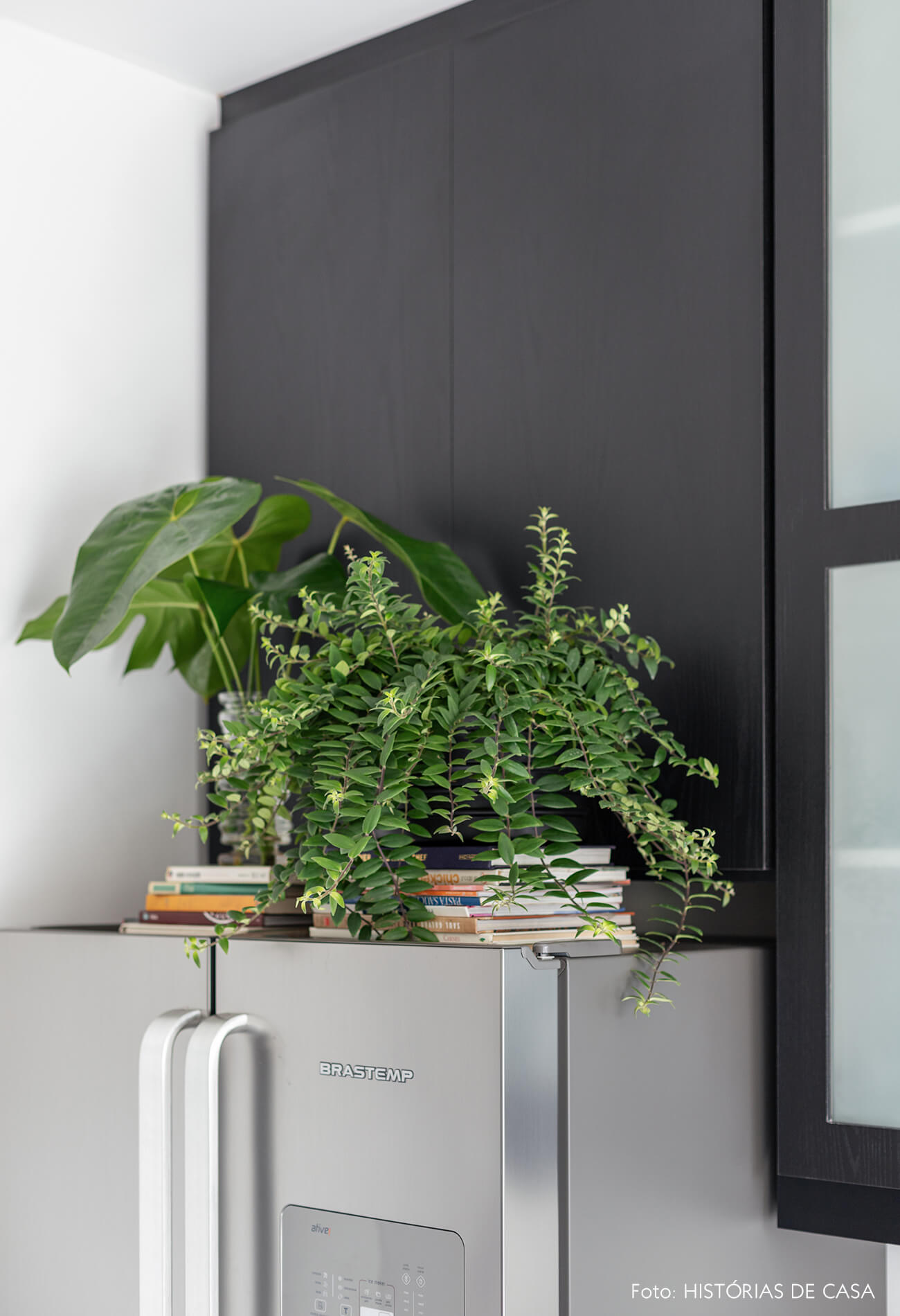 Apartamento escandinavo, cozinha com plantas e armários pretos