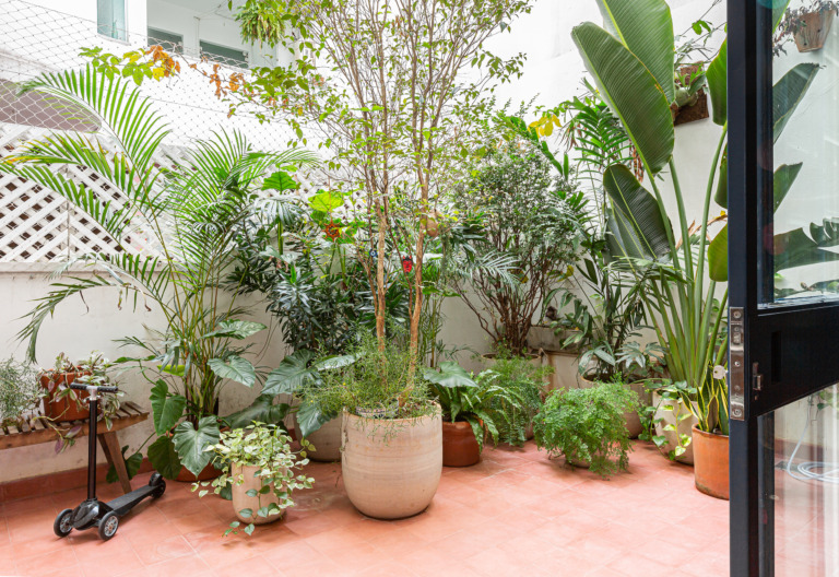Apartamento térreo com jardim e muitas plantas
