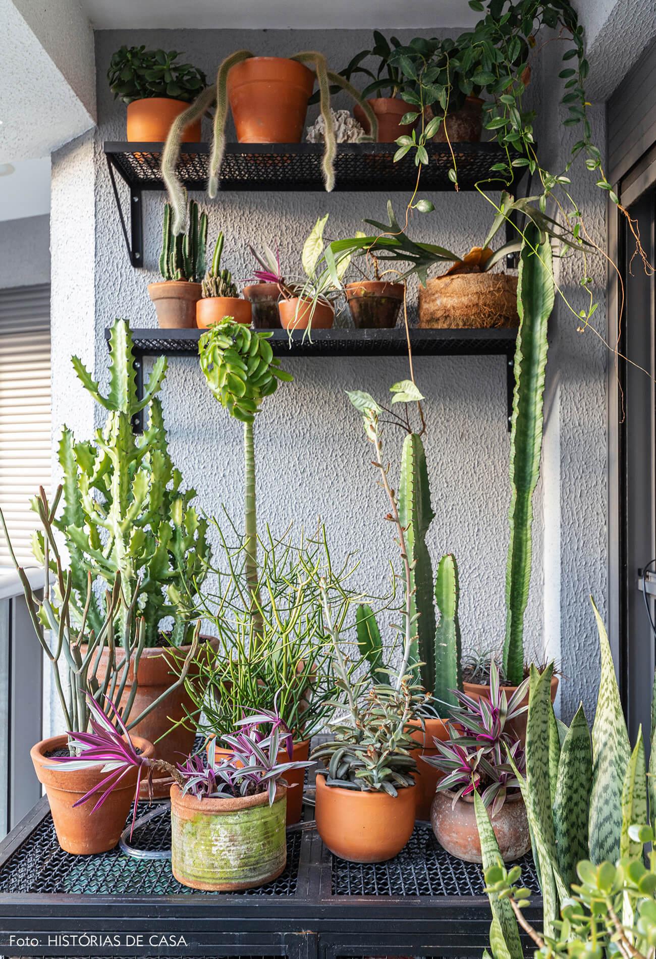 Detalhe na sacada de plantas