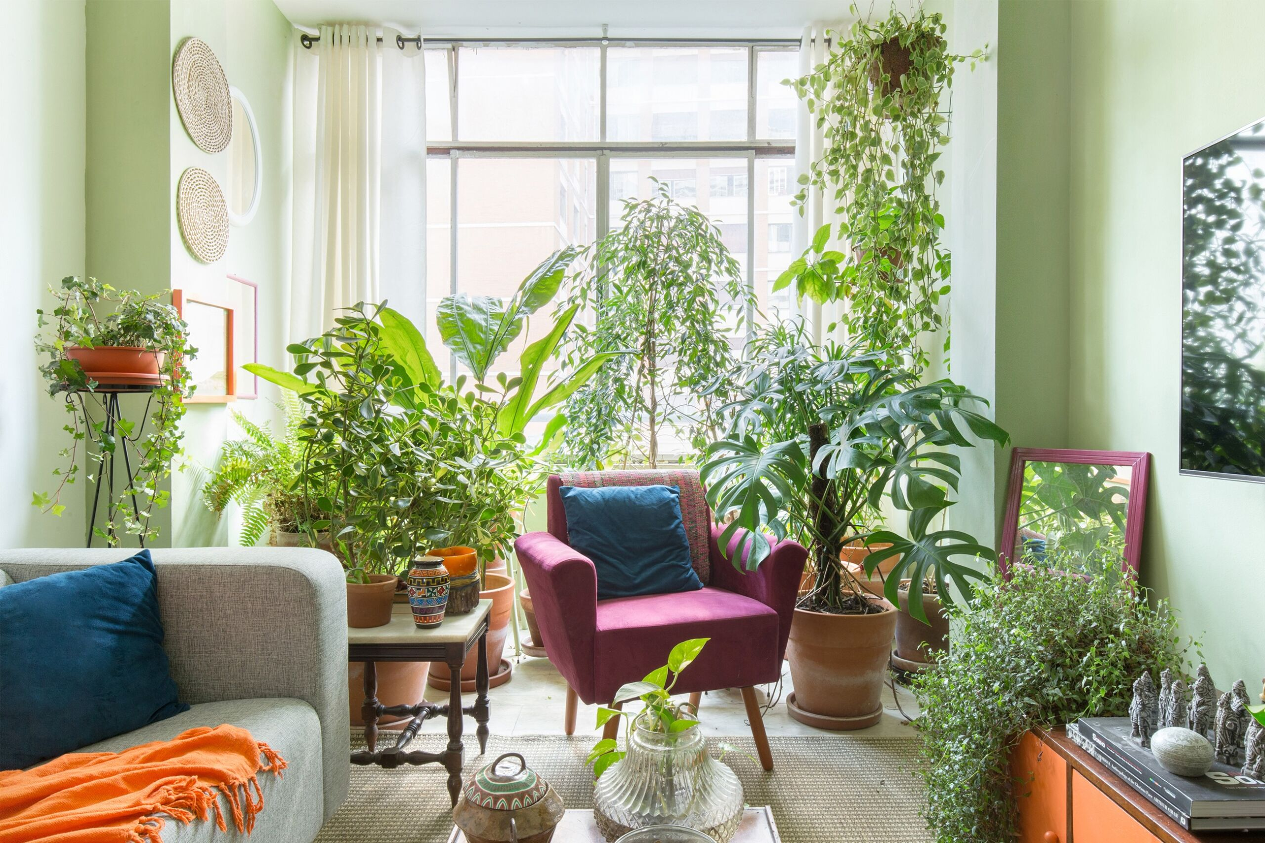 sala-plantas-poltrona-rosa-mesa-madeira