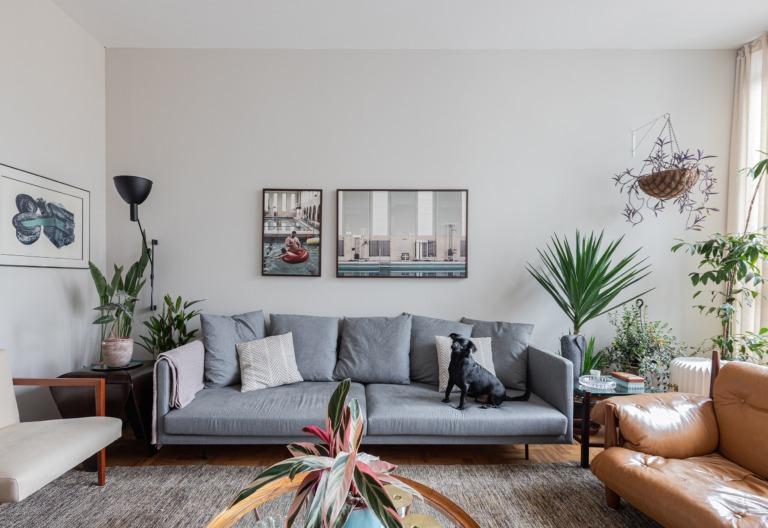 decoracao-fernando-sala-sofa-cinza-tapete-plantas-poltrona-couro-pet