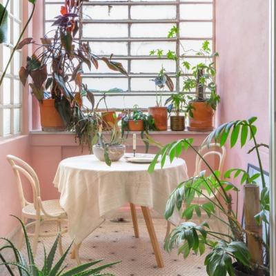 Parede rosa e mesa com toalha branca e plantas