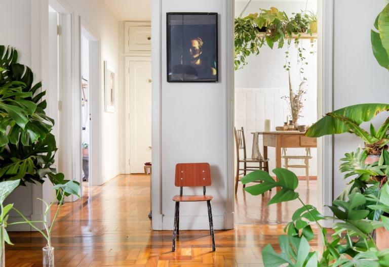 sala plantas parede branca piso madeira