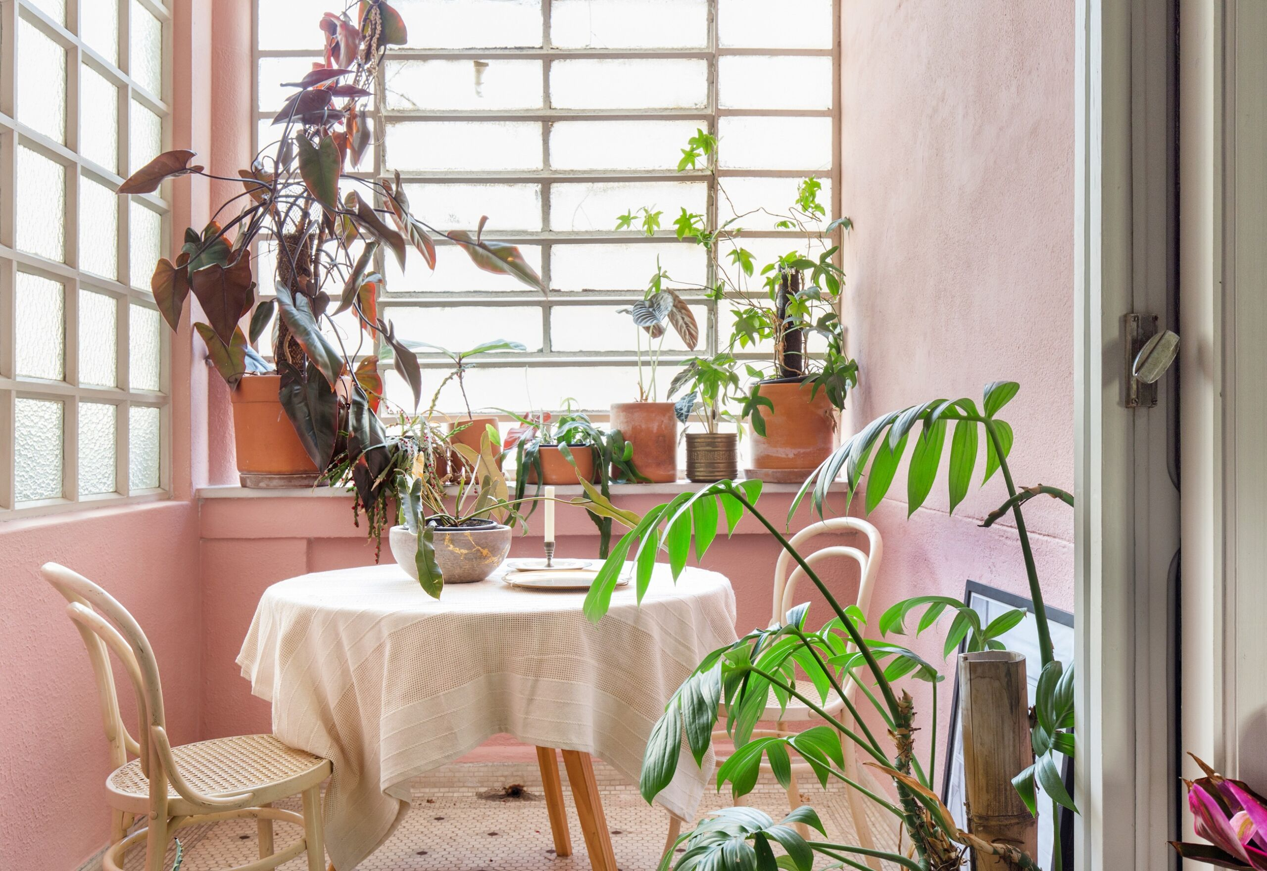 parede rosa com mesa com toalha branca e cadeiras de madeira branca e plantas