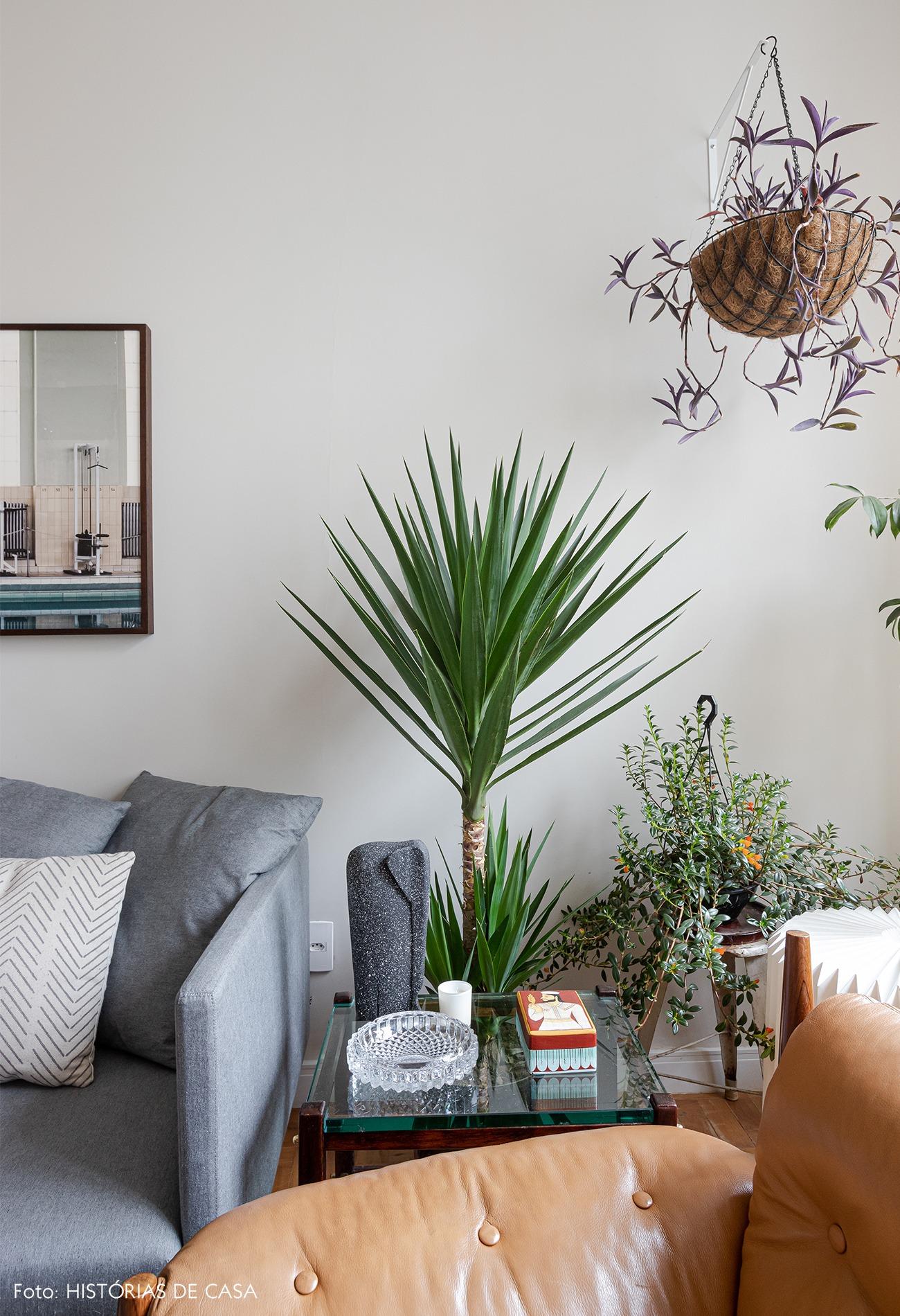 sala-poltrona-couro-plantas