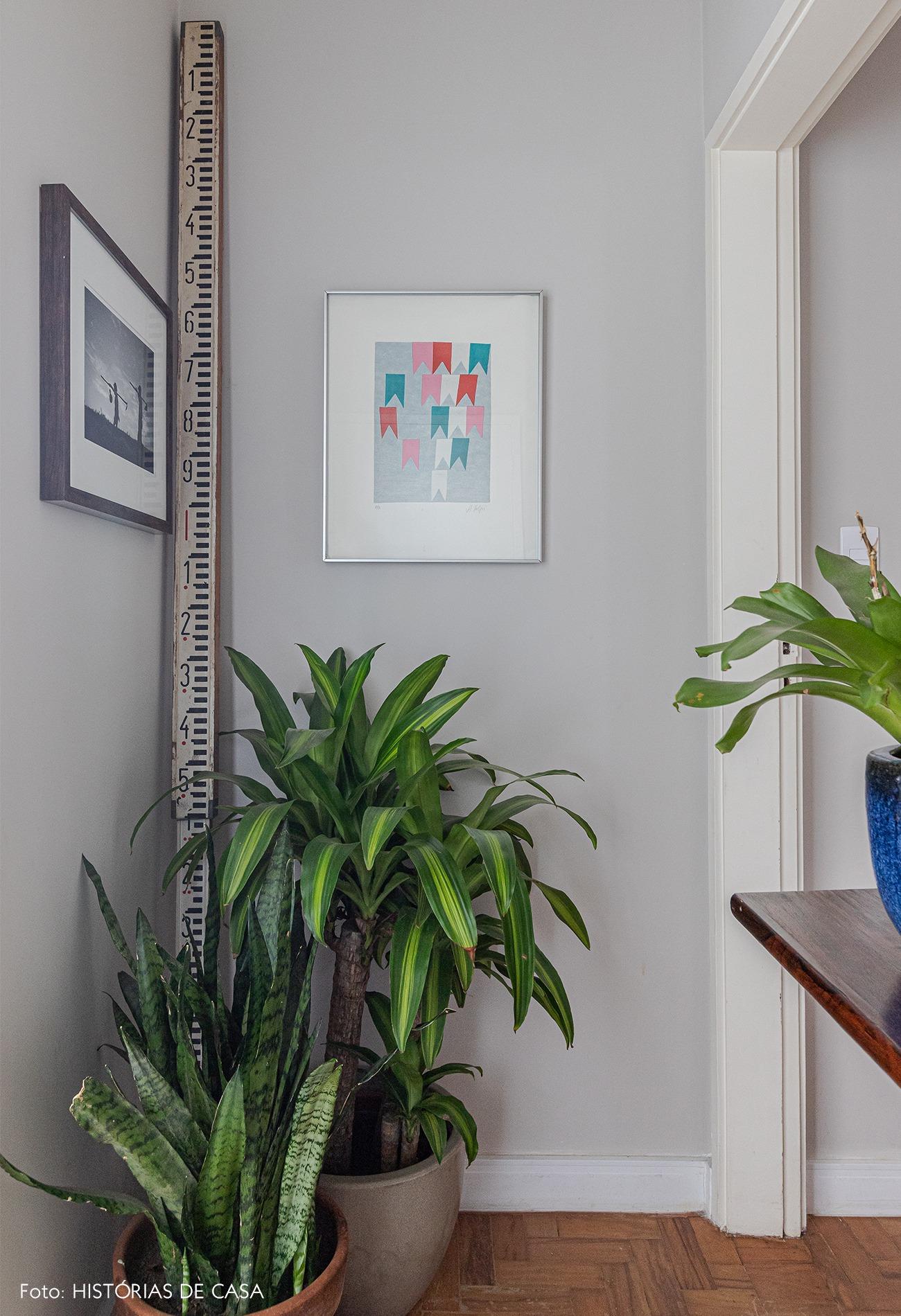 hall-vasos-plantas-quadro