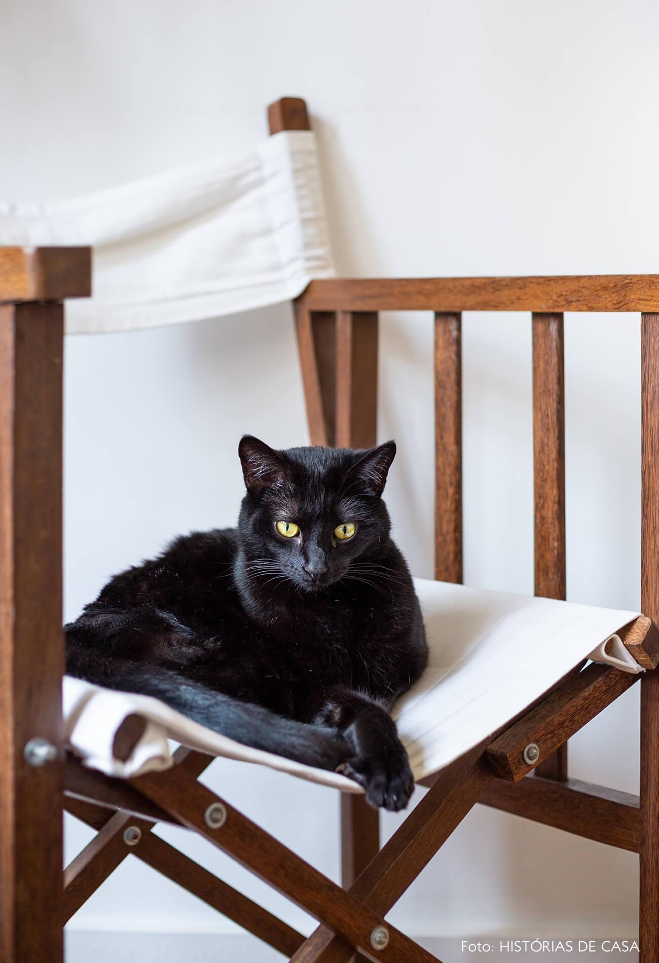 retrato-pet-gato-preto-na-cadeira-de-madeira