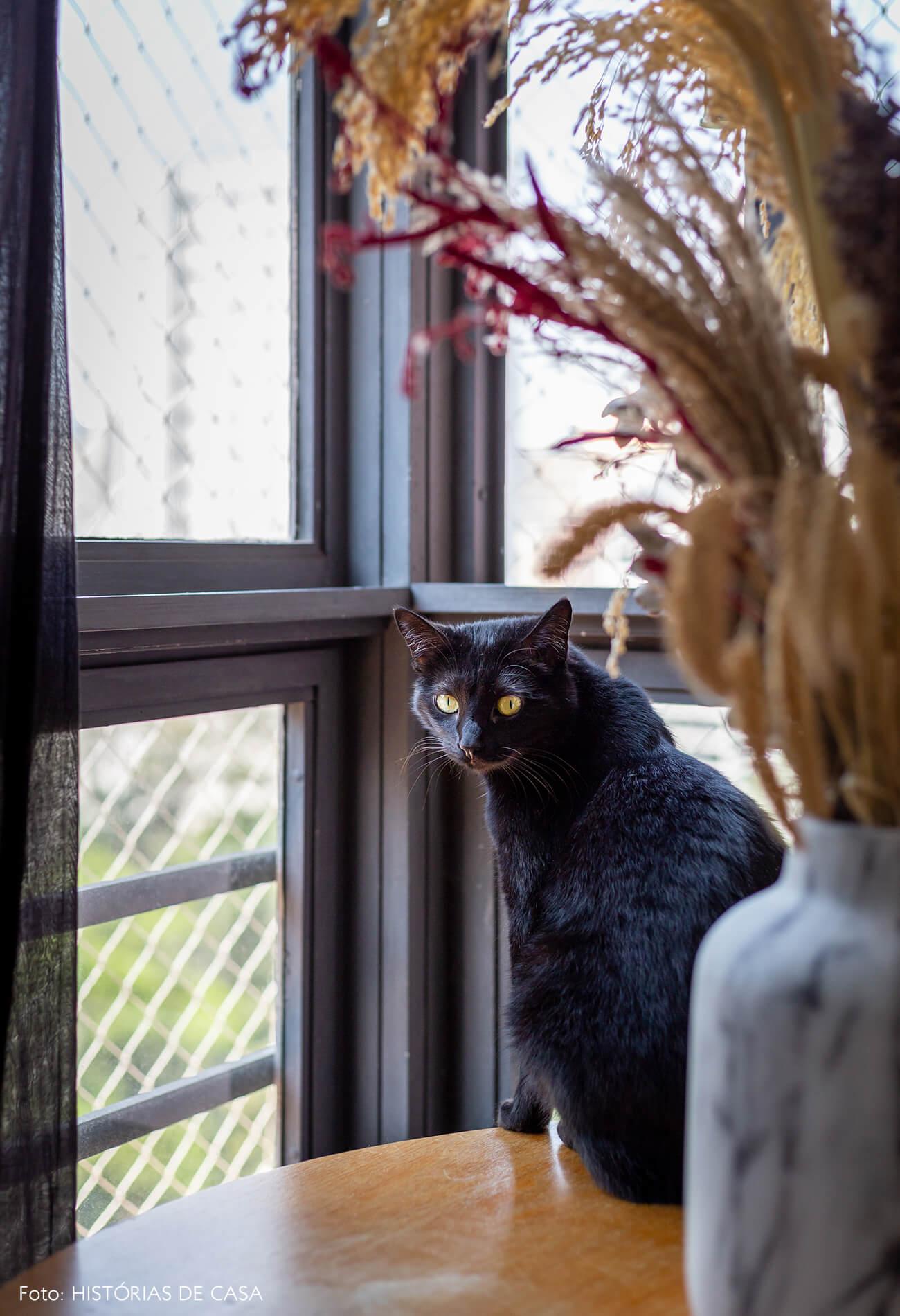 retrat-pet-gato-preto-na-mesa-circular-de-madeira